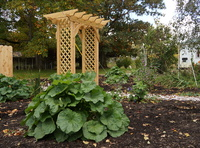 Hopewell Installs New Garden with Wooden Arbor