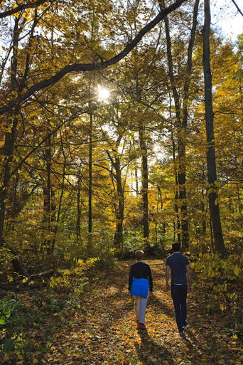 Two people walk in the woods on an autumn day at Hopewell Therapeutic Farm.