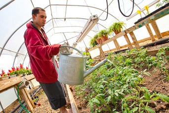 A resident waters plants in the greenhouse at Hopewell Therapeutic Farm